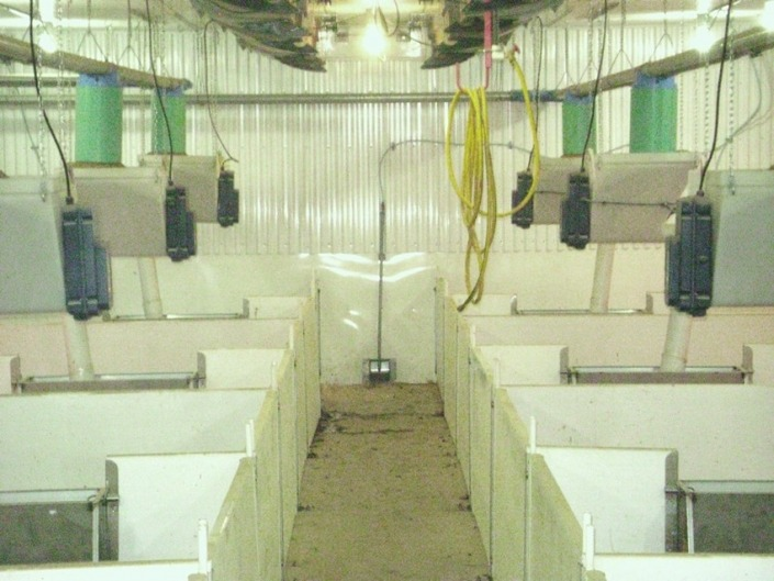 Gestal XM, for post-weaning and finishing barns.