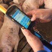 Gestal Mobile being used inthe farm