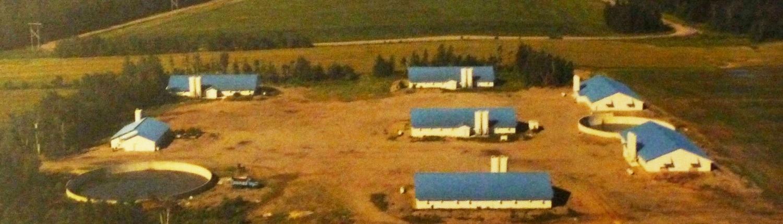 Aldo farm in 1997