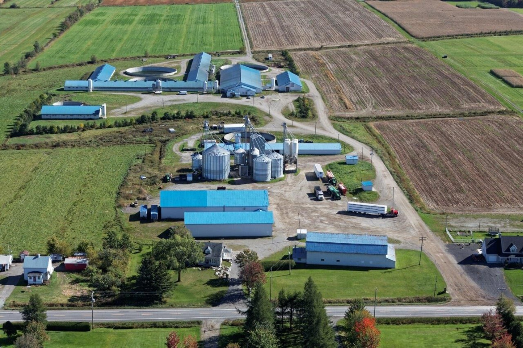 Aldo farm in Canada.  Lefebvre brothers are the owners