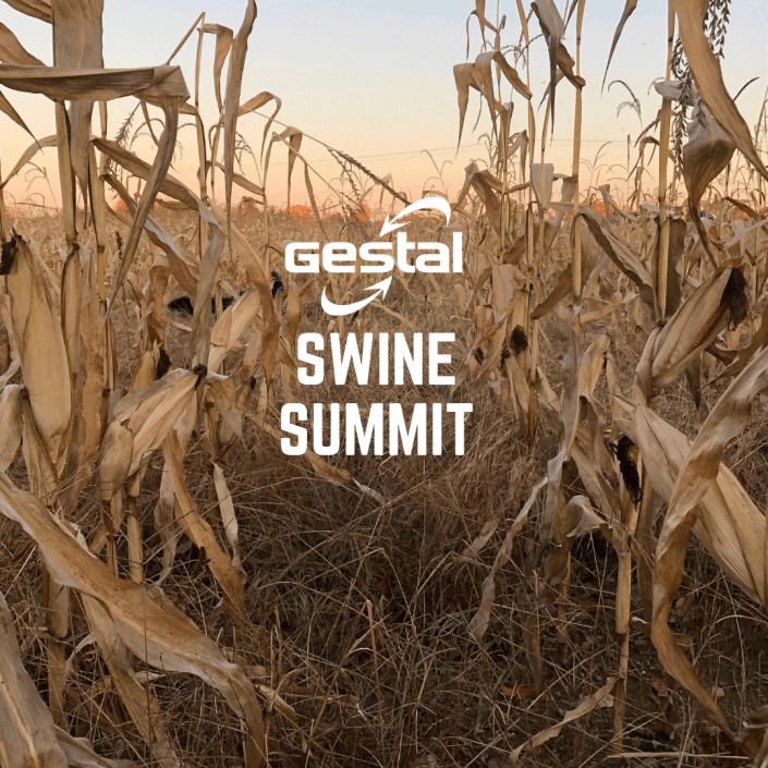 Gestal Swine Summit
