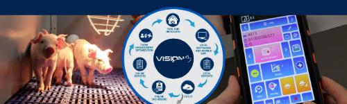Vision - swine feeding software
