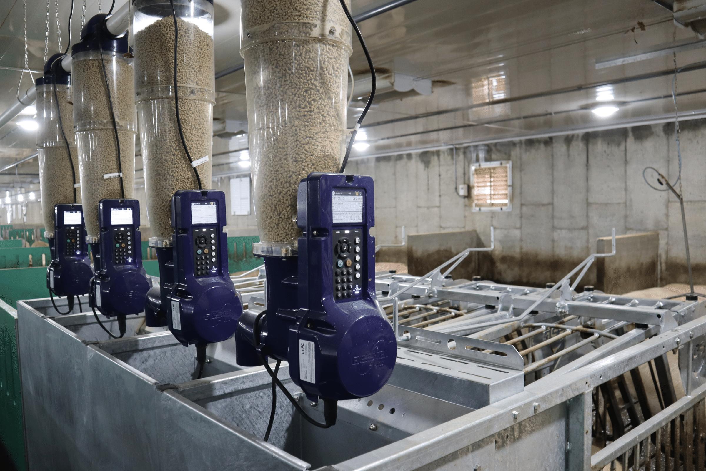 Gestation equipment