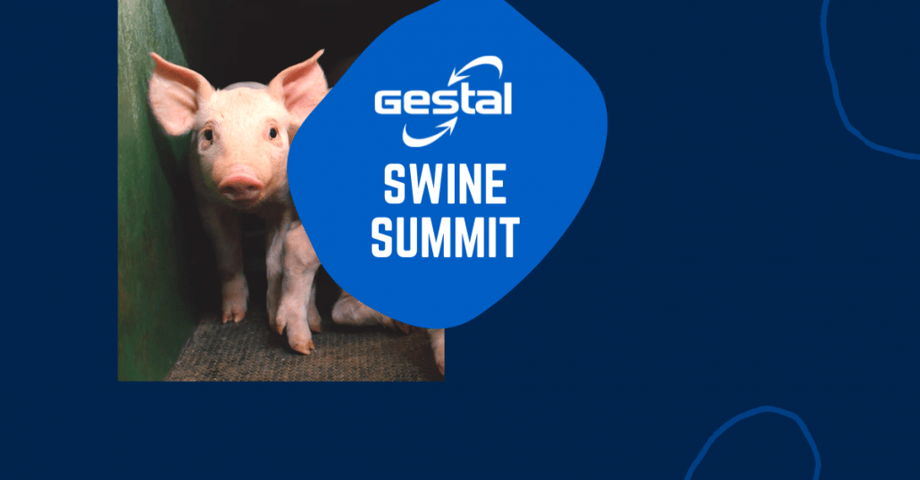 Gestal Swine Summit